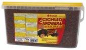 Tropical Cichlid Arowana Medium Sticks 10 Lt 3600 Gr