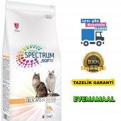 Spectrum Delicate 34 Yetişkin Kedi Maması 2 Kg