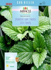 Miracle Spearmint Nane Tohumu (200 Tohum) 1 Adet