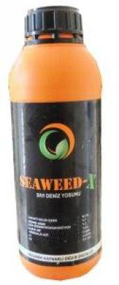 Bitki Direncini Artıran Seaweed X Sıvı Deniz Yosunu 1 Litre