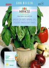 Saksılık Çok Geniş Yapraklı Tatlı Fesleğen Tohumu(250 Tohum) 20 A