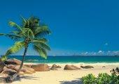 Komar 4 006 Kumsal Deniz Poster Duvar Kağıdı