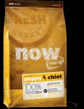 Pet Curean Now Fresh Tahılsız Yavru Açık Köpek Mama 1kg