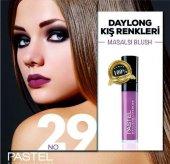 Pastel Daylong Ruj 24 Saat Kalıcı Mat New 29 No