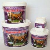 Royal Royvimin B Forte 25 Kg Toz Yem Katkısı Mayalı Vitamin, Mineral Premiksi