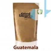 Cool Beans Guatemalan Santa Barbara 250 Gr
