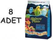 Nature Plan Meyve Aromalı Ve Ballı M.kuşu Yemi 1000 Gr X 8 Adet
