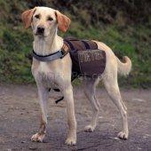 Trixie Köpek Sırt Çantası, M L 27 X 16 Cm Kahve Mavi