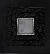 Dolphın Şık Tasarım Albüm