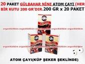 20 Paket Atom Çayı Zencefilli Doğal Lezzet 200 Gr X 20 Kutu