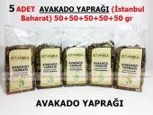 5 Adet Avakado Yaprağı 5x50gr 1.kalite Taptaze