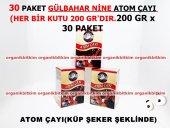 30 Paket Atom Çayı Zencefilli Doğal Lezzet 200 Gr X 30 Kutu