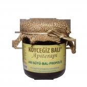 Köyceğiz Balı Propolis Arı Sütü Bal Karışımı 250 G Cam Kavanoz