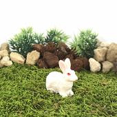 Bigpratic Teraryum Malzemeleri Oturan Tavşan