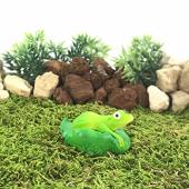 Bigpratic Teraryum Malzemeleri Kurbağa Açık Yeşil Renk