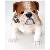 Giftpoint Bulldog B.