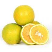 Tatlı Limon (13 Kg Tatlı Limon)