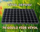 70 Gözlü Fide Viyol (10 Adet) Tohum Çimlendirme Viyolü