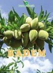 Badem Yetiştiriciliği Kitabı