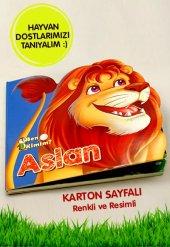 Ben Kimim Aslan