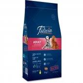 Felicia High Premium Kuzulu Yetişkin Köpek Maması 3kg