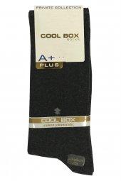 Cool Box E 027 Erkek Dikişsiz Soket Çorap