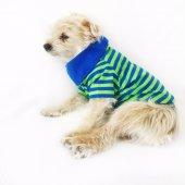 Lacivert Yeşil Çizgili Polo Yaka Tişört By Kemique Köpek Kıyafe