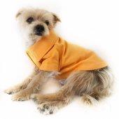 Hardal Polo Yaka Tişört By Kemique Köpek Kıyafeti Köpek Elbise