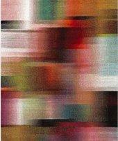 Merinos Halı Opal Pıcaso 21872 160x230 110