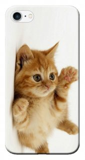 Iphone 6 6s Kılıf Silikon Baskılı Sevimli Kedi Stk 205