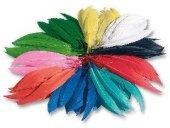 Folia Renkli Kuş Tüyleri 100 Gr.