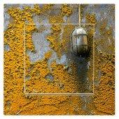 Dekoratif Baskılı Elektrik Düğmesi Priz Kapı Zili Yosun Lamba