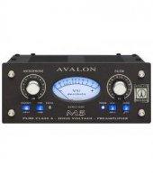 Avalon M5 Mikrofon Pre Amplifier