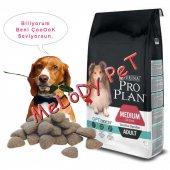 Pro Plan Sensitive Digeston Kuzu Etli Yetişkin Köpek Maması 14kg