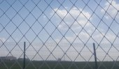Kuş Filesi 5x4 20 M2 Kuş Ağı Balkon Ağı Balkon Filesi Kuş Önleme Filesi Güvercin Filesi Güvercin Önleme Filesi