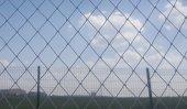 Kuş Filesi 10x2 20 M2 Kuş Ağı Balkon Ağı Balkon Filesi Güvercin Ağı Kuş Önleme Filesi Güvercin Önleme Filesi