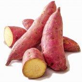 Kırmızı Uzun Patates Tohumu (Bc1913)
