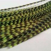 Saç Tüyü Fosforlu Yeşil Hareli