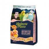 Nature Plan Ballı Yumurtalı Yavru Muhabbet Kuş Yemi 400 Gr (10 A