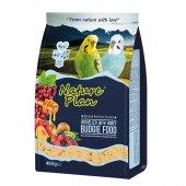 Nature Plan Ballı Meyveli Kabuksuz Muhabbet Kuş Yemi 400 Gr (5 A