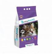 Benty Sandy Ultra Topaklaşan Kedi Kumu(Lavanta Kokulu) 5 L