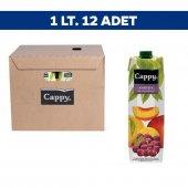 Cappy Karışık Meyvesuyu 1 Lt X 12