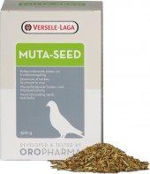 V.laga Or.muta Seed Güv(Tüylenme Sezonu Tohum Karş...