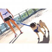 Ezydog 825 Lrr25o Leashes Road Runner Zero Shock Köpek Gezdirme K