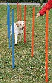 Trixie Agility Köpek Eğitim Direkleri 12 Adet 115 Cm