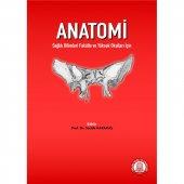 Anatomi Sağlık Bilimleri Fakülte Ve Yüksek Okullar...