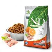 N&d Tahılsız Balık Portakal Orta Irk Yetişkin Köpek Maması 2,5 Kg