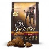 Pro Plan Duo Delice Parça Etli Yetişkin Köpek Maması 10 Kg