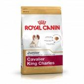 Royal Canin Cavalier Junior Yavru Köpek Maması 1,5 Kg