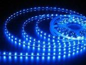 şerit Led Dış Mekan 5 Metre Silikonlu 24 Volt Mavi...